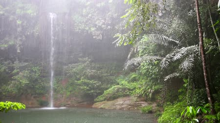 esőerdő : Waterfall at borneo rainforest in rainy day