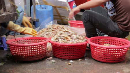 hijenik olmayan : prawns on ground unhygienic in asian market Stok Video