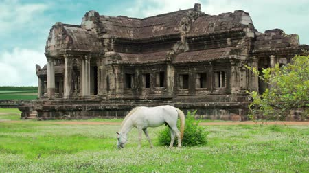 southeast : Horse in Angkor Wat, advanced retouched, sky replacement, color enhancement