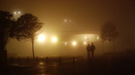 romantic couple : Romantic couple walking on a foggy night