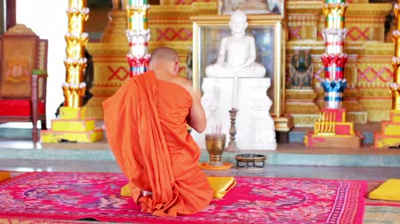 łysy : buddhist monk with orange robe pray in temple Wideo