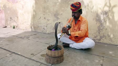 flet : Cobra enchanter sitting in the street charming his snake