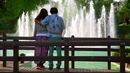 szökőkút : Young couple looking at fountain in a local park Stock mozgókép