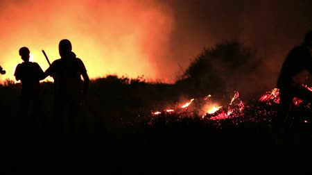 kamp ateşi : firefighters at night forest fire Stok Video
