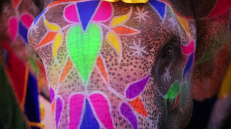 elefante : Close-up view of painted elephant head