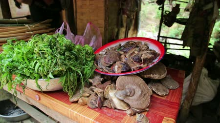 otwarcie : Selling Illegal Magic Mushroom Openly in Local Market, Laos Wideo