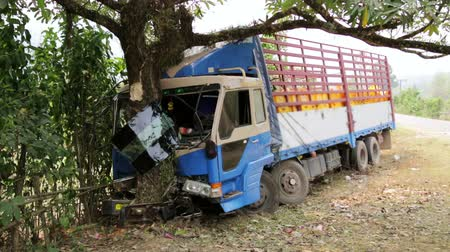 isabet : Traffic accident, truck hit tree on intercity road Stok Video