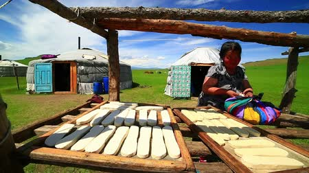 gép : MONGOLIA - JULY 2013: Mongolian senior woman preparing food by drying them at her village
