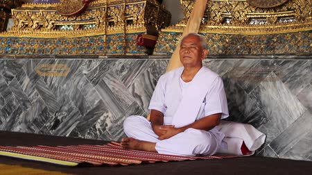 boudha : meditation under golden buddha statues