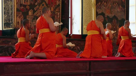 szerzetes : buddhist monks pray in temple under golden buddha statue Stock mozgókép