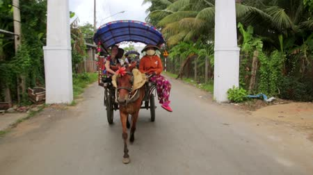 pónei : MEKONG DELTA, VIETNAM - MAY 2014: local horse riders