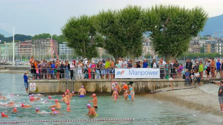 švýcarský : GENEVA - SWITZERLAND, AUGUST 2015: public swimming competition on lake Dostupné videozáznamy