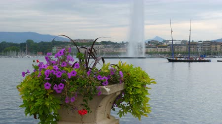 eau : jet deau fountain and flowers at geneva lake, switzerland