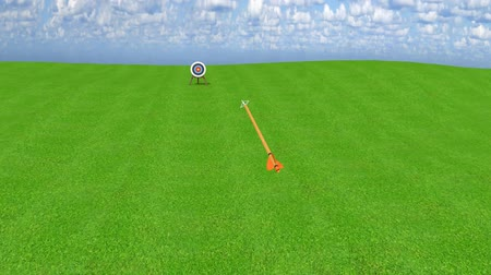Arrow from an archer accurately hitting center bullseye of target, 3D animation Stock Footage