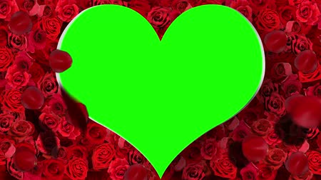 red symbol : Heart Frame- Red roses and falling petals .Seamless and looping animation including green screen and alpha channel