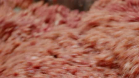 açougue : Processing of pork meat minced in a meat grinder. Vídeos