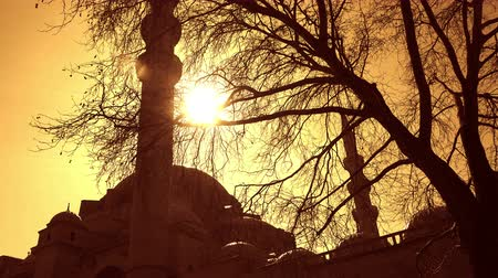 sepia : Suleymaniye Mosque at sunset, Istanbul, Turkey Stock Footage