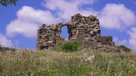 акрополь : Ruins of Pergamum in springtime, flowers among ruins,  Bergama, Turkey