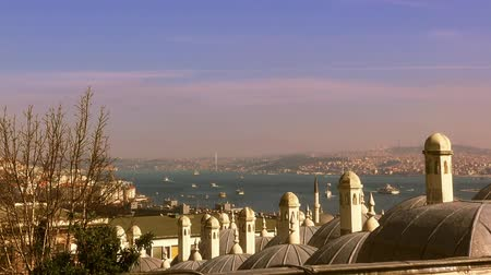 турецкий : View of the Bosphorus from Suleymaniye Mosque, 18.02.2018, Istanbul, Turkey Стоковые видеозаписи