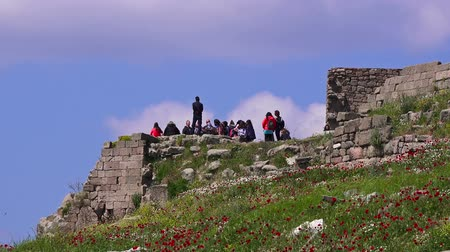 pergamon : Bergama, Turkey - April 21, 2018: Group of schoolchildren visit the ruins of the ancient city of Pergamon, the famous museum Stock Footage