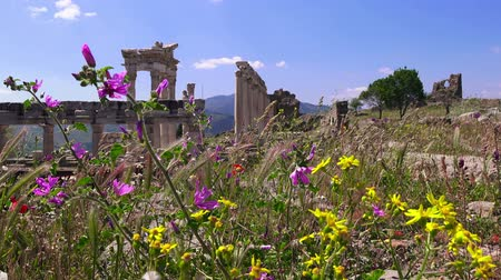 pergamon : Ruins of Pergamum, ruins of ancieny city, beautiful view in spring, Bergama, Turkey Stock Footage