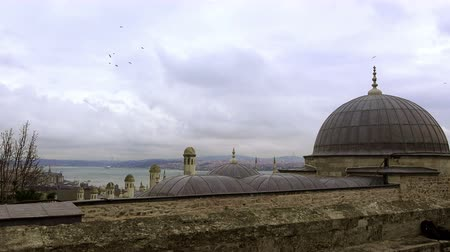 птицы : View of the Bosphorus from Suleymaniye Mosque,  Istanbul, Turkey Стоковые видеозаписи