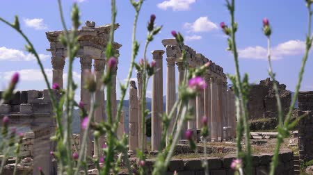 акрополь : Pergamon museum, ruins of ancieny city, beautiful view in spring, Bergama, Turkey