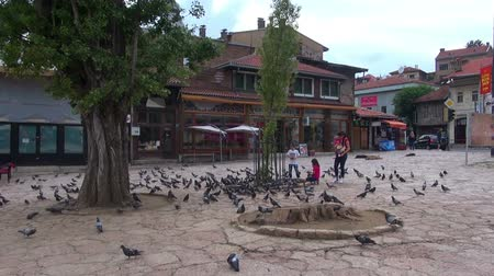 Pigeons on the Bascarsija square in Sarajevo,  29.06.2015,  Bosnia and Herzegovina, Sarajevo Stock mozgókép