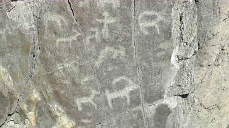 hieróglifo : Ancient petroglyph on the rock. Altay, Russia.