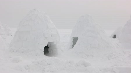 igloo : Igloo settlement in Siberia tundra. Stock Footage