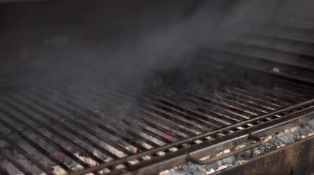 fogão : an appetizing piece of meat, sprinkled with salt and pepper, put the grill on the grill on the fire