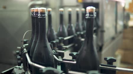 Sparkling wine bottles on conveyor or water bottling machine in winery