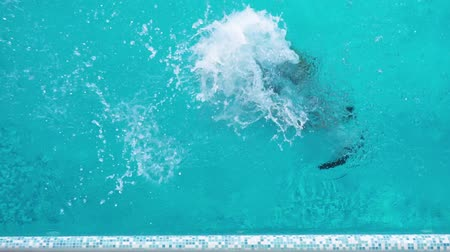 the diver trains to dive in the pool, jumps into the water