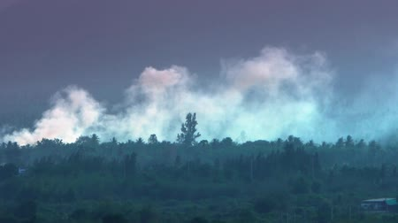 slash and burn : Deforestation. Logging and burning rainforest. Forest fire envrionmental problem Stock Footage