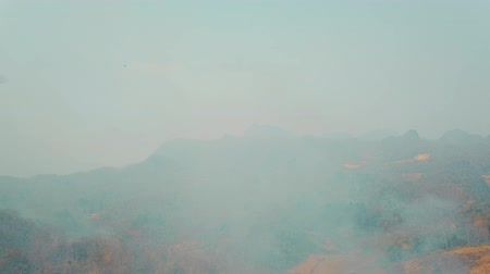 elpusztított : Smog of forest fires. Deforestation and Climate crisis. Toxic haze from rainforest fires. Aerial video 4k.