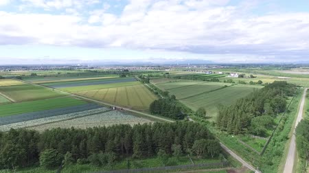 аккуратный : Aerial view of the multicopter-rural scenery  1