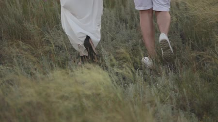 Couple in love walking in the field. Legs. Close-up. Stock mozgókép