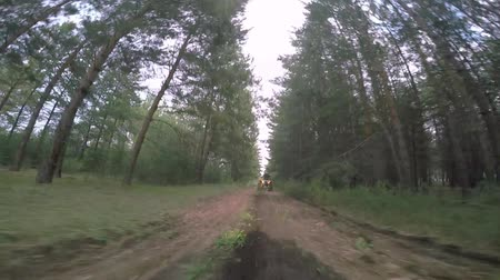 Two men on a quad bike and cross bike go through the woods.