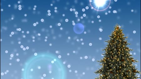 kutup : Christmas tree with blue background, moving, and screening effect with snow fall Stok Video