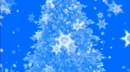 质地 : Christmas tree with blue sky, and screening effect