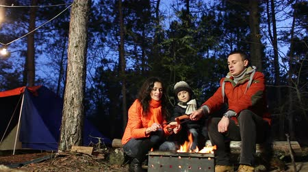 şenlik ateşi : Happy family cooks sausages on campfire in the forest. Series. Stok Video
