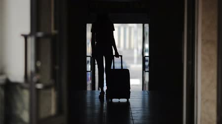 proceed : Female traveller silhouette, woman going with trolley case