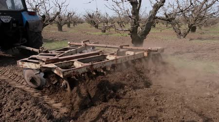 furrow : Tractor cultivating the ground with a disc harrow in the fruit garden