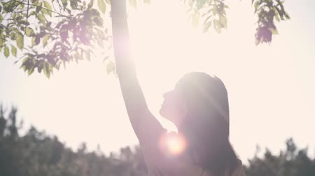 A young beautiful woman is touching branches of the trees, standing in the sunlight