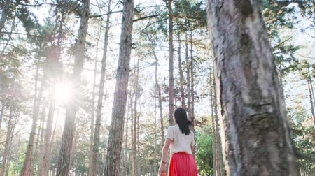 A young beautiful woman is happily running among numerous pine trees in the woods. View from the back