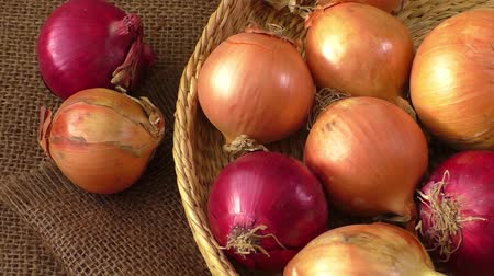 chalota : Various onions on a background sacking, burlap Stock Footage