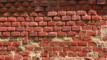 zeď : Background of old vintage crumbling brick wall on bright sunny day Dostupné videozáznamy