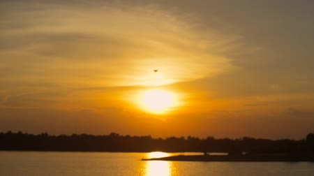 stable fly : drone pilot flying over on sunset. drone moving in to the sun. silhouette drone. Stock Footage