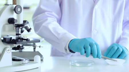 focus on foreground : Scientist working at lab using tool counting drug Stock Footage