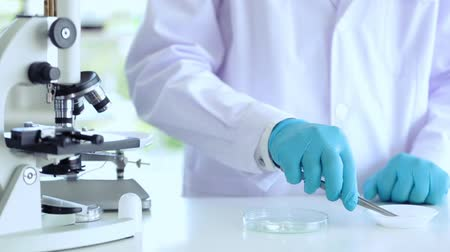 substância : Scientist working at lab using tool counting drug Stock Footage